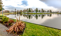 23532 55th Ave S #5, Kent C75 L25 Alena K.
