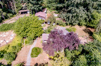 24428 SE 235th Place,  Maple Valley, Claire K N75 L70